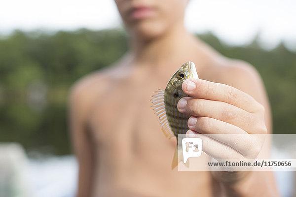 Porträt eines Jungen  der einen Pinfisch hochhält  Shalimar  Florida  USA