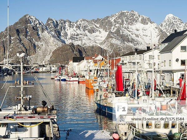 Harbour of village Henningsvaer   island Austvagoya. The Lofoten islands in northern Norway during winter. Europe  Scandinavia  Norway  February.
