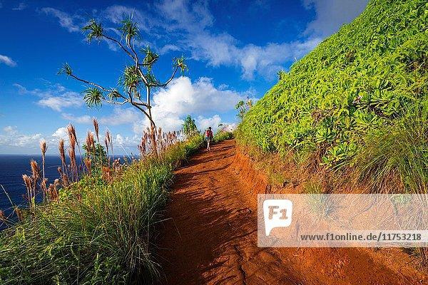 Hiking the Kalalau Trail on the Na Pali Coast  Kauai  Hawaii USA.