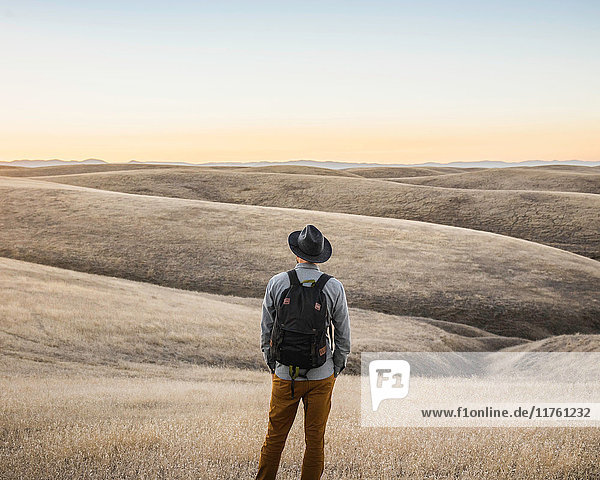 Rear view of man looking out at rolling prairie hills  Bakersfield  California  USA