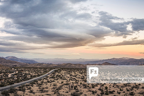 Landscape view of distant highway in Joshua Tree National Park at dusk  California  USA