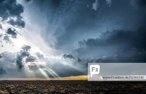 Dämmerungsstrahlen durch die Wolken um das Superzellen-Gewitter  das am 24. Mai 2016 kurz vor Dodge City  Kansas  einen großen Tornado erzeugt