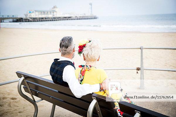 Rückansicht eines Paares im Vintage-Stil aus den 1950er Jahren  das von der Strandbank aus schaut