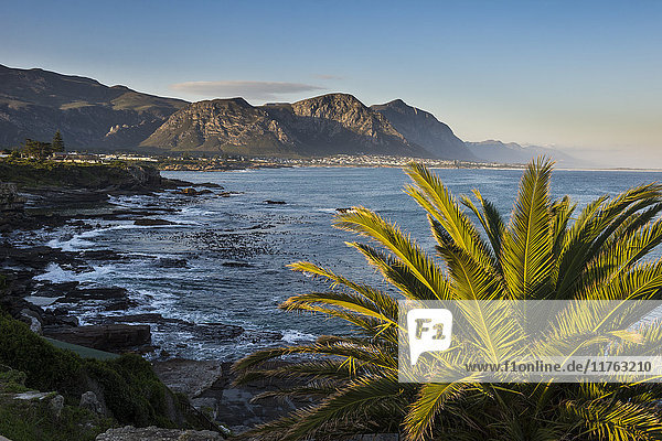 Hermanus Bay at sunset  Western Cape  South Africa  Africa