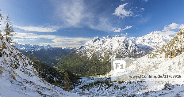 Panorama of Alpe Fora with Monte Disgrazia in the background  Malenco Valley  Province of Sondrio  Valtellina  Lombardy  Italy  Europe