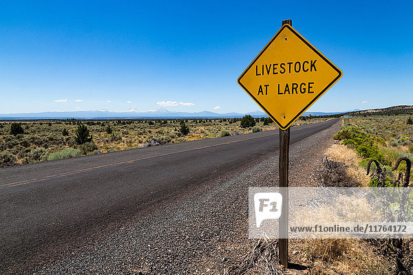 Empty road in central Oregon's High Desert with Livestock at Large sign and the Three Sisters peaks in the distance  Oregon  United States of America  North America
