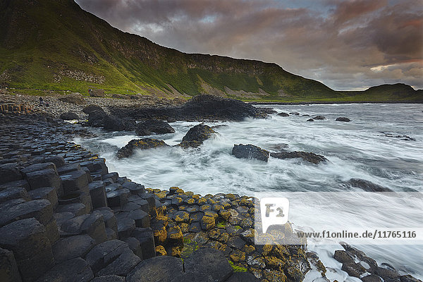 An evening view of the Giant's Causeway  UNESCO World Heritage Site  County Antrim  Ulster  Northern Ireland  United Kingdom  Europe
