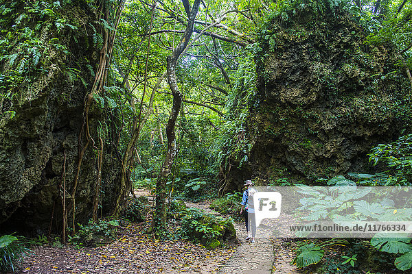 Sacred site of Sefa Utaki  UNESCO World Heritage Site  Okinawa  Japan  Asia
