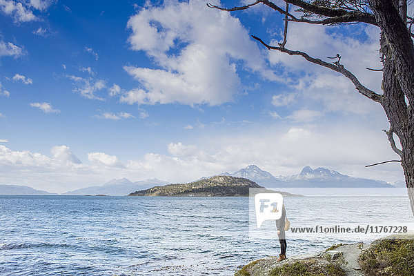 Woman looking out over the Magellan Straits and Darwin Mountain range in Tierra del Fuego National Park  Argentina  South America