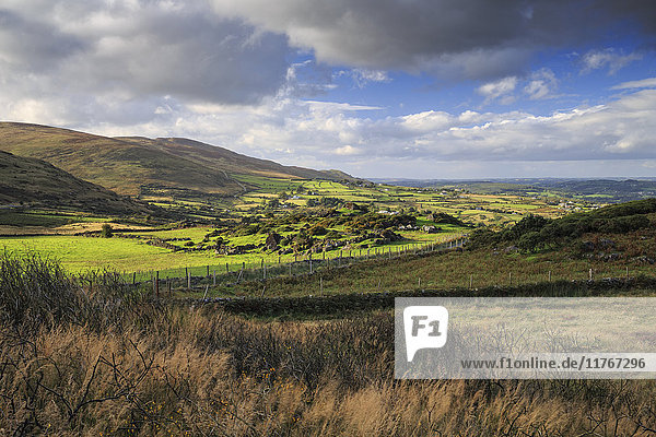 Cooley Mountains  County Louth  Leinster  Republic of Ireland  Europe