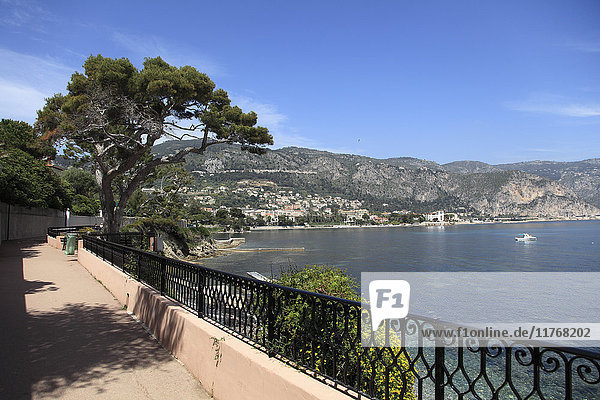 Coastal Path  Cap Ferrat Peninsula  Alpes Maritimes  Cote d'Azur  French Riviera  Provence  France  Europe