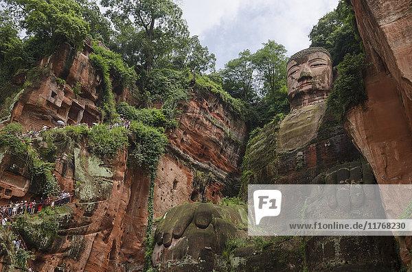 Leshan Giant Buddha  UNESCO World Heritage Site  Leshan  Sichuan Province  China  Asia