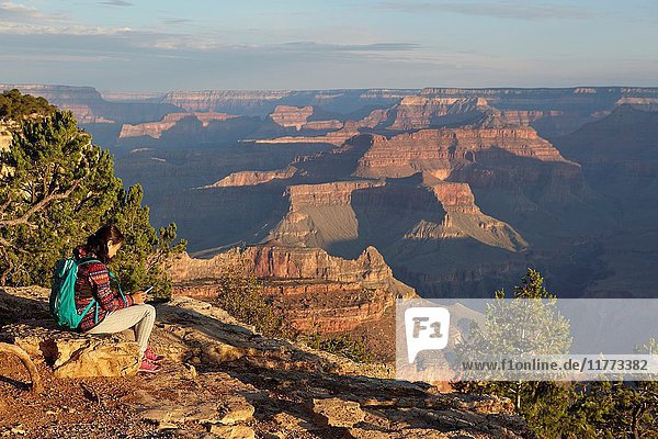 Grand Canyon seen from Yavapai point  South Rim  Arizona  United States.
