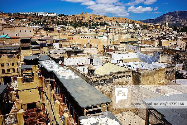 Elevated view of the medina of Fez  Morocco