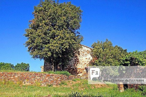 Church of Sant Cebrià dels Alls  Les Gavarres  Girona  Catalonia  Spain