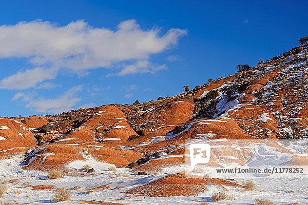 Fresh snow on the Rim Rock formations  Capitol Reef National Park  Utah  USA.