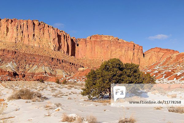 Receding winter snow in the Waterpocket Fold  Capitol Reef National Park  Utah  USA.