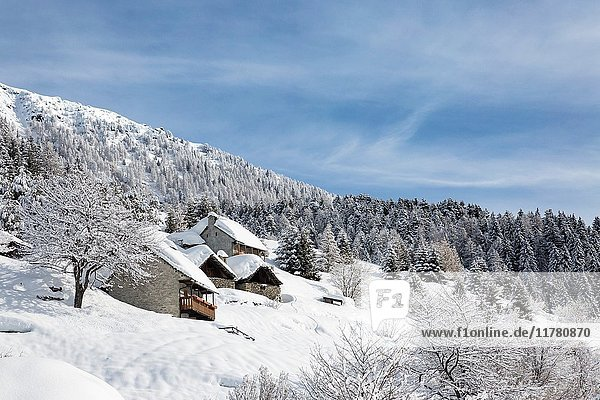 Winter view of the Alp Calantigine (Alp Calantigine  Varzo  Verbano Cusio Ossola province  Piedmont  Italy  Europe).