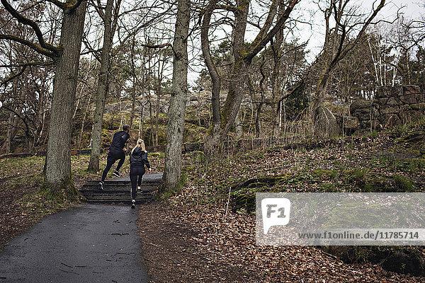 Athletinnen und Athleten joggen auf einem Wanderweg inmitten kahler Bäume im Wald.