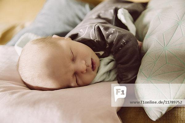 Neugeborenes Baby liegt und schläft auf der Couch zwischen den Kissen.