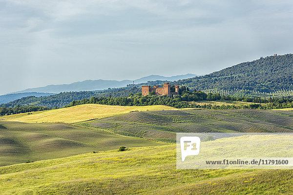 Italien  Toskana  Val d'Orcia  Asciano  alte Burg