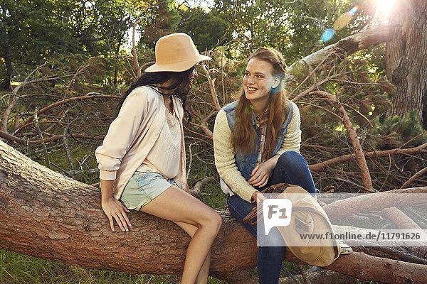 Zwei junge Frauen entspannen sich auf dem Baumstamm