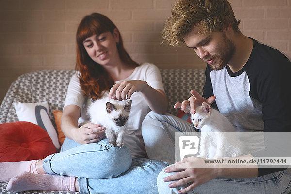 Junges Paar mit Kätzchen auf der Couch zu Hause