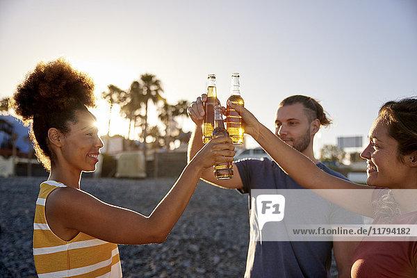 Drei Freunde stoßen mit Bierflaschen am Strand an.