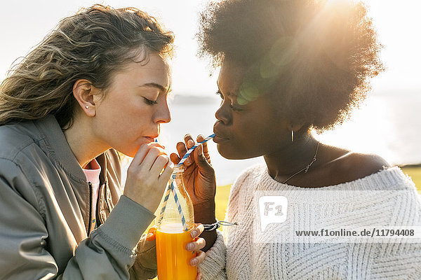 Zwei beste Freunde trinken Orangensaft im Freien.