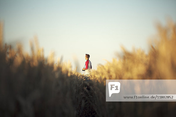 Man standing on meadow