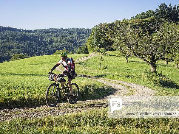 Mountain biker riding on dirt track along grass field in forest