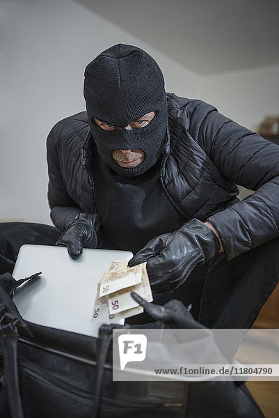 Portrait of burglar stealing laptop and Fifty Euro banknotes