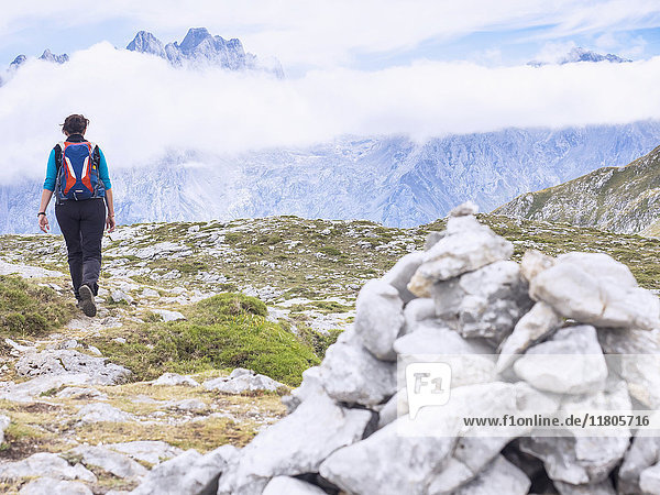 Woman on a hiking tour in the Picos de Europa near Covadonga  Asturias  Northern Spain. In background the summit of Picu Urriellu