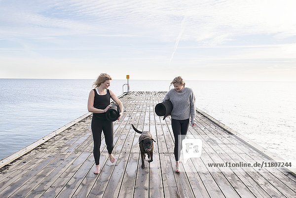 Women walking with dog on pier