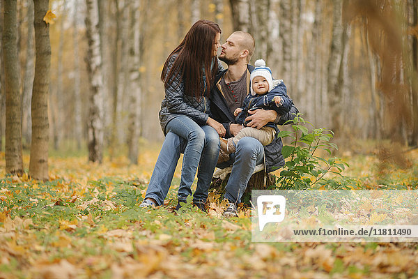 Middle Eastern couple sitting on tree stump with baby son in autumn
