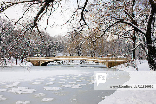 Bow Bridge am See des Central Park im Winter  Manhattan  New York City  USA