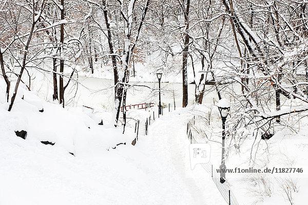 Pfad über den See im Central Park im Winter  Manhattan  New York City  USA