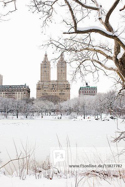Ansicht der San-Remo- und Dakota-Gebäude vom See aus im Winter  Central Park  Manhattan  New York City  USA