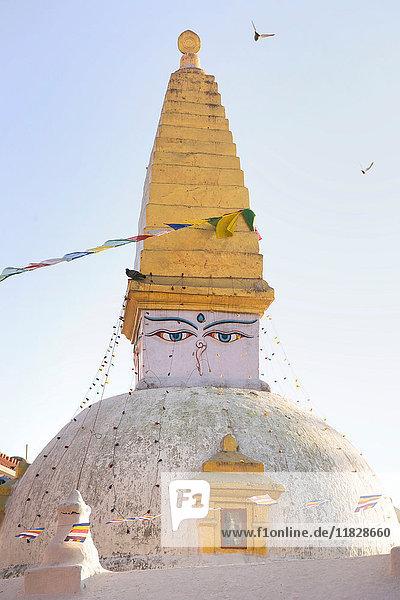 Stupa  Boudhanath  Kathmandu  Nepal