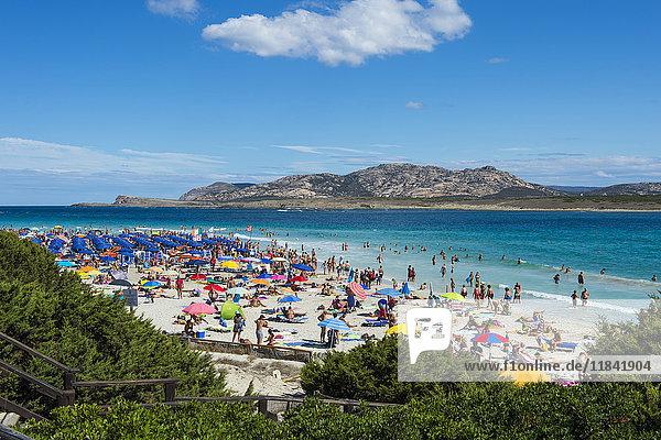 Beach of Pelosa  Sardinia  Italy  Mediterranean  Europe