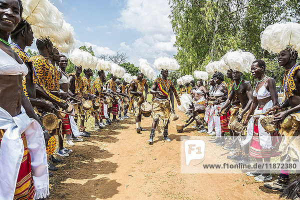 'A traditional part of a wedding ceremony with drums; Uganda' 'A traditional part of a wedding ceremony with drums; Uganda'