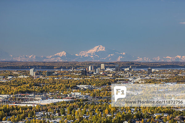 Aerial view of the Anchorage bowl  downtown Anchorage  and Denali in the background during autumn  Southcentral Alaska  USA