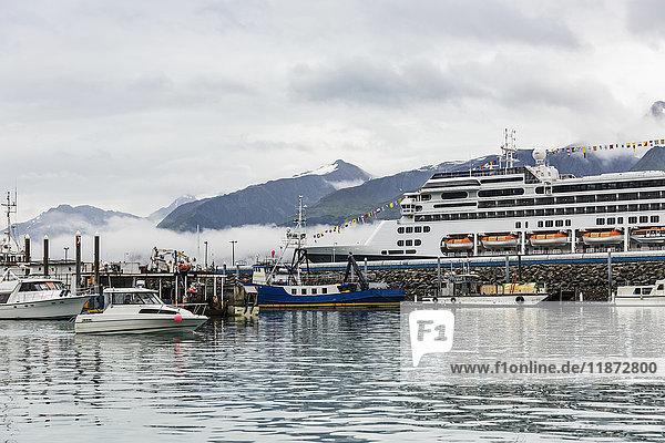 Cruise ship docked at the Seward boat harbor  Southcentral Alaska  USA