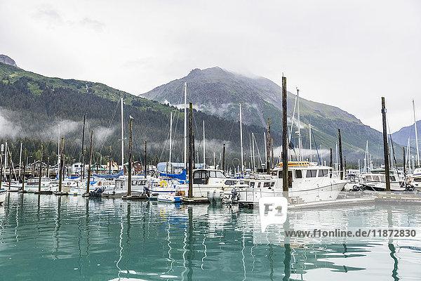 View of the Seward Small Boat Harbor  Southcentral Alaska  USA