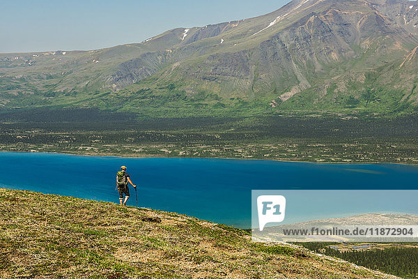 A hiker looks out over Twin Lakes from a mountain ridge in Lake Clark National Park & Preserve  Southcentral Alaska  USA