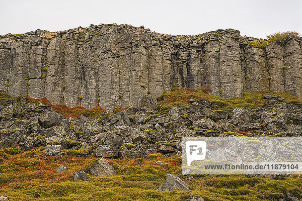 'Basalt columns of old lava in the Snaefellsness Peninsula; Iceland'