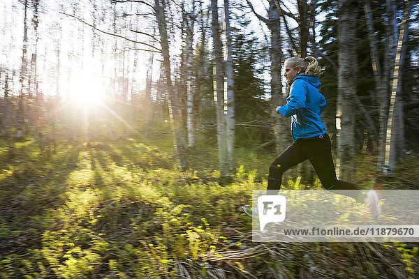 'A young woman running across the plants of the forest floor in a forest; Homer  Alaska  United States of America'