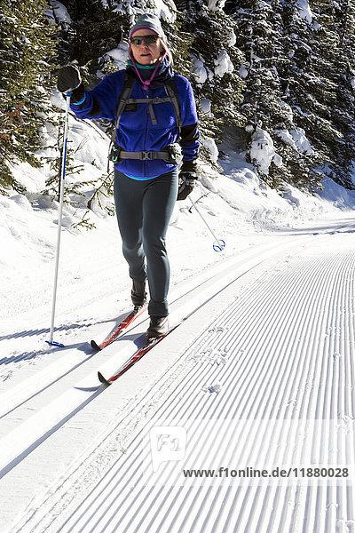 'Female cross country skier on a freshly groomed track set trail; Kananaskis Country  Alberta  Canada'