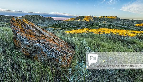 'A lichen covered rock with 70 Mile Butte in the distance  Grasslands National Park; Saskatchewan  Canada'