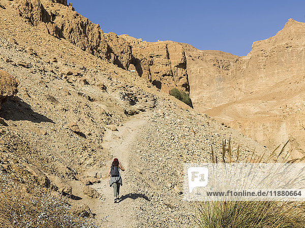 'A young woman walks on a trail through the rugged hills of Ein Gedi Nature Reserve  Dead Sea District; South Region  Israel '